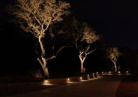 Outdoor Lighting San Antonio