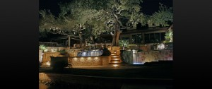 San Antonio Landscape Lighting Outdoor Lighting Systems